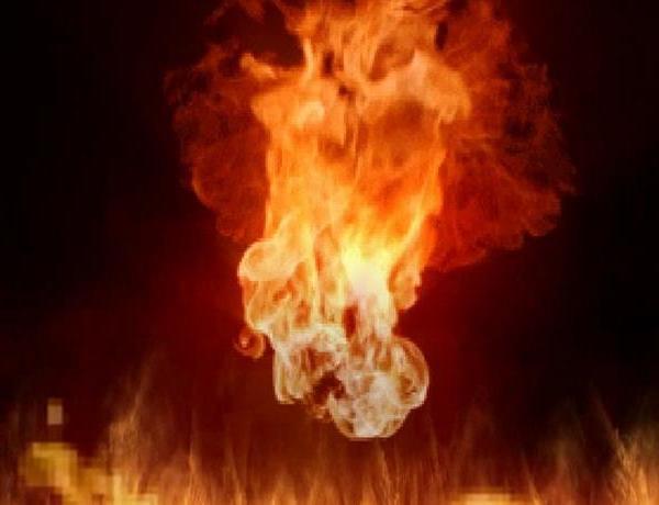 Grass Fire in Carson County_7852776990905682718