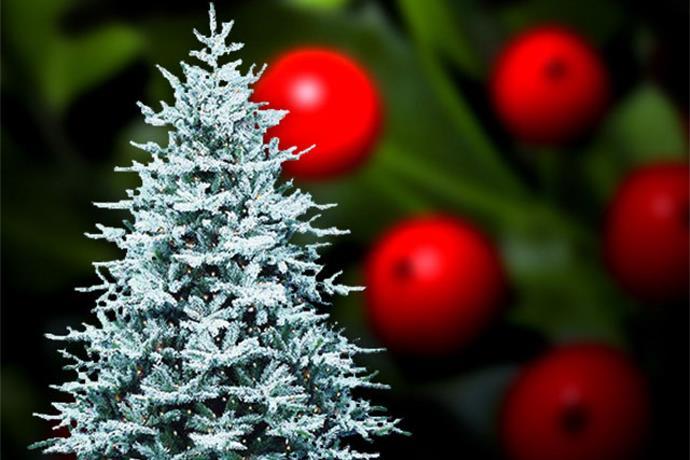 Christmas Carols_-2262758622614042270