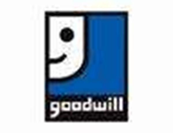 Goodwill Auction_-1835698794122230567