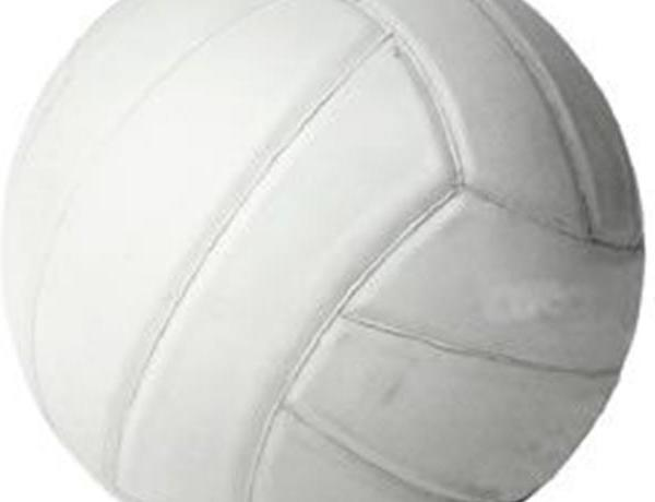 Adult Volleyball_1199578934518238416