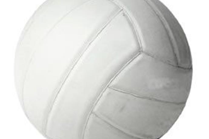 Adult Volleyball Leagues_1767373425399515498