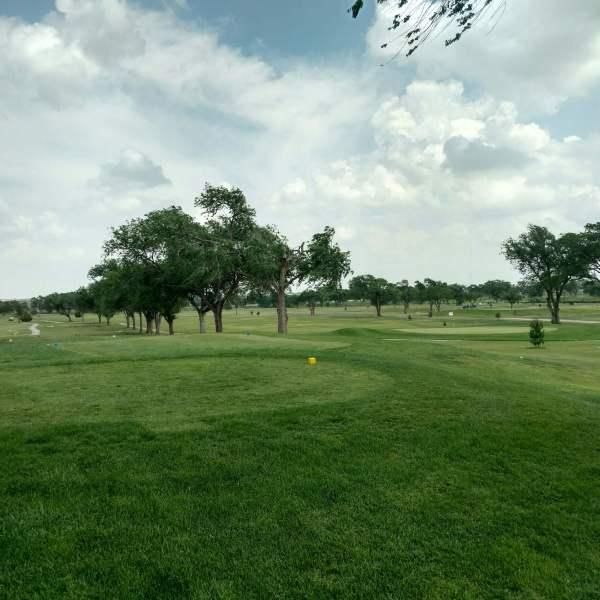 BvB golf tournament_1463963810224.jpg