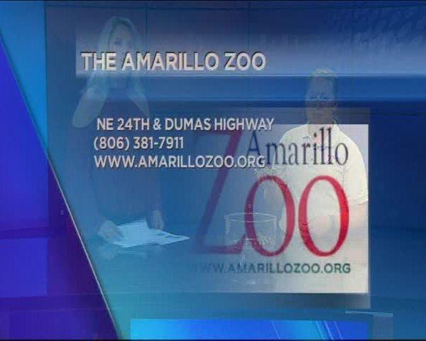 Fall Fun at the Amarillo Zoo_20160916232301