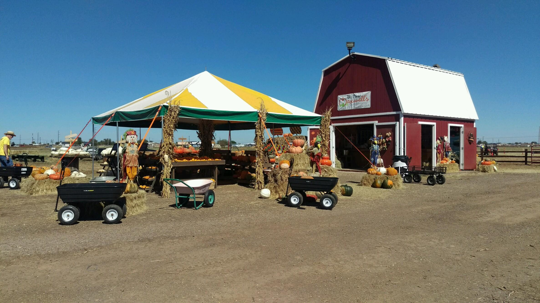 Maxwell's Pumpkin Farm