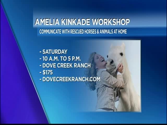 Talk to the Animals with Ameilia Kinkade_46367425