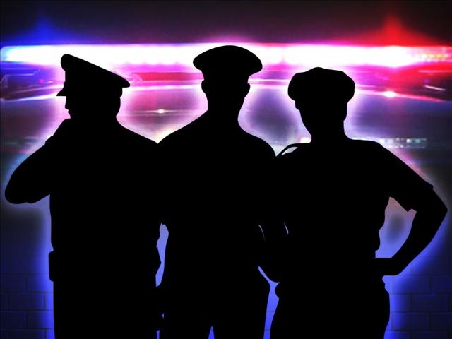 POLICE SILHOUETTE_1498837040795.jpg