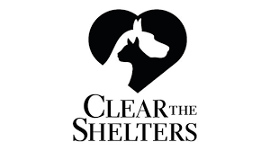 SHELTERS_1503095377856.png