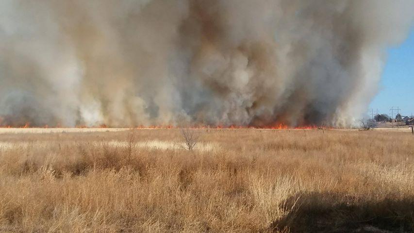 Georgia Grass Fire_1512954554106.jpg