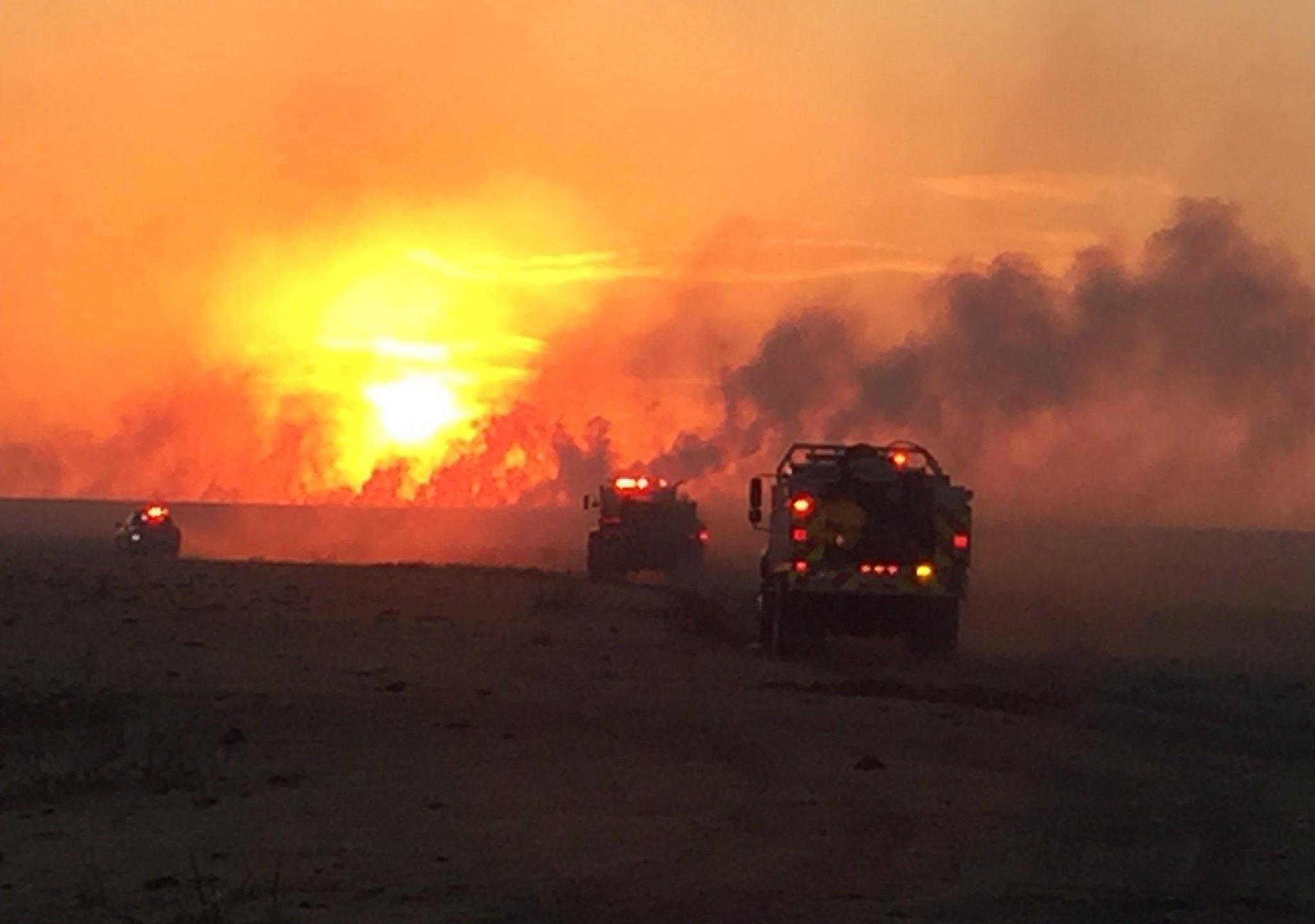 Armstrong Fire Courtesy Texas AandM Forest Service_1522718216769.jpg.jpg
