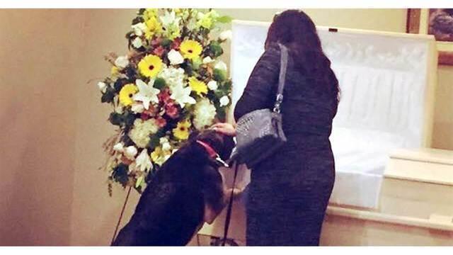 Dog visits funeral home for last goodbye to beloved owner_1525999377472.jpg_42249168_ver1.0_640_360_1526006066899.jpg.jpg