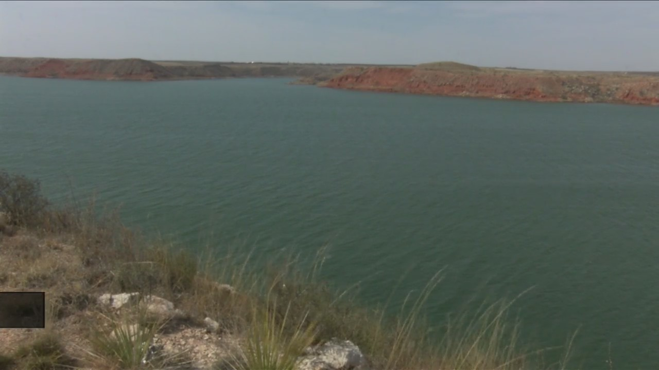 Mussel detection dogs back at Lake Meredith   KAMR