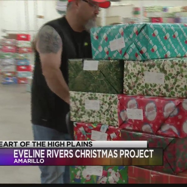 Eveline Rivers Delivers Gifts to the Children in Need