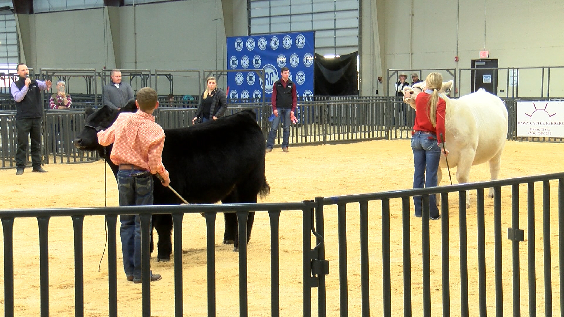 71st Annual Randall County Jr. Stock Show