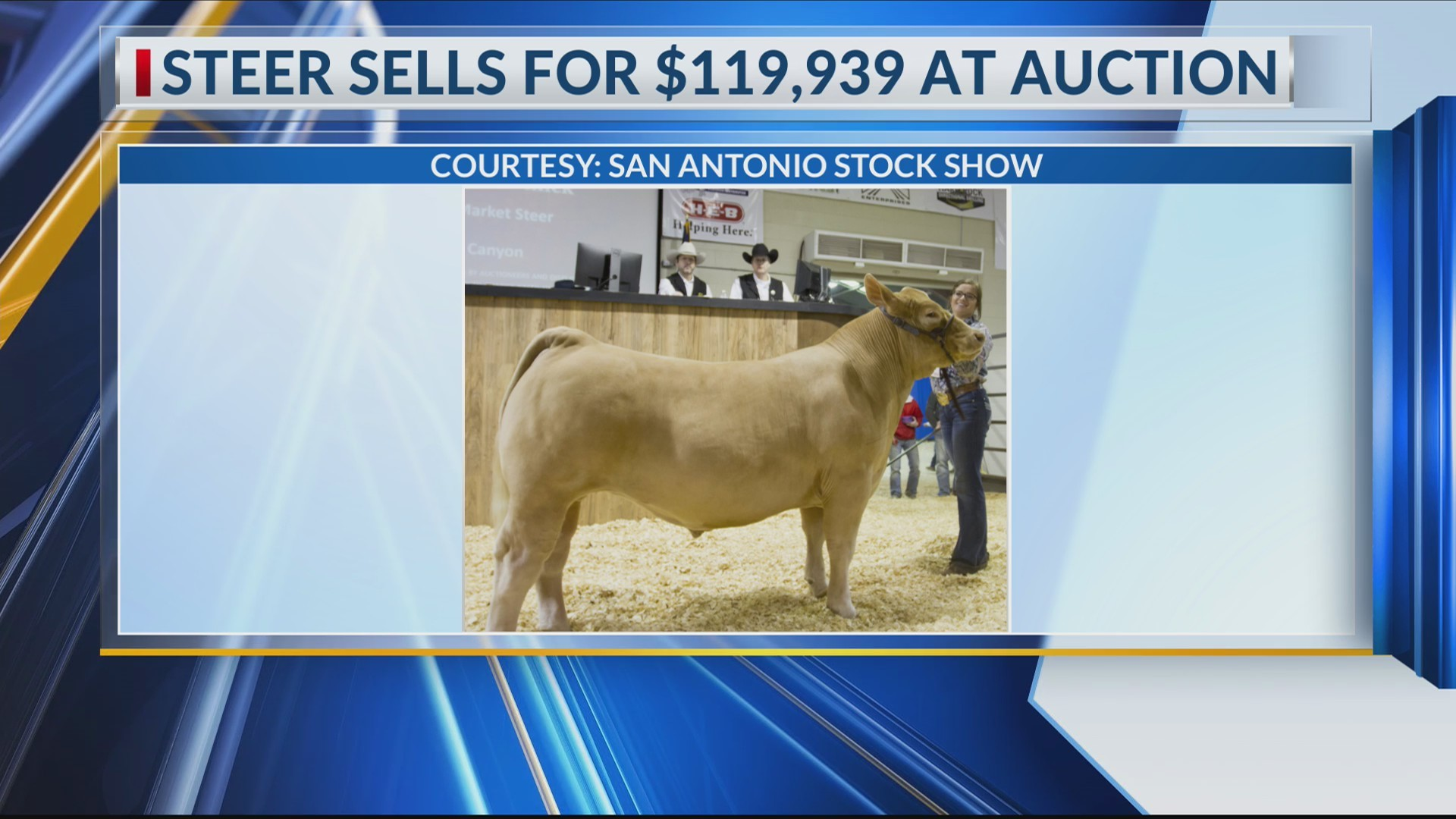 Canyon Woman's Steer sells for nearly $120,000