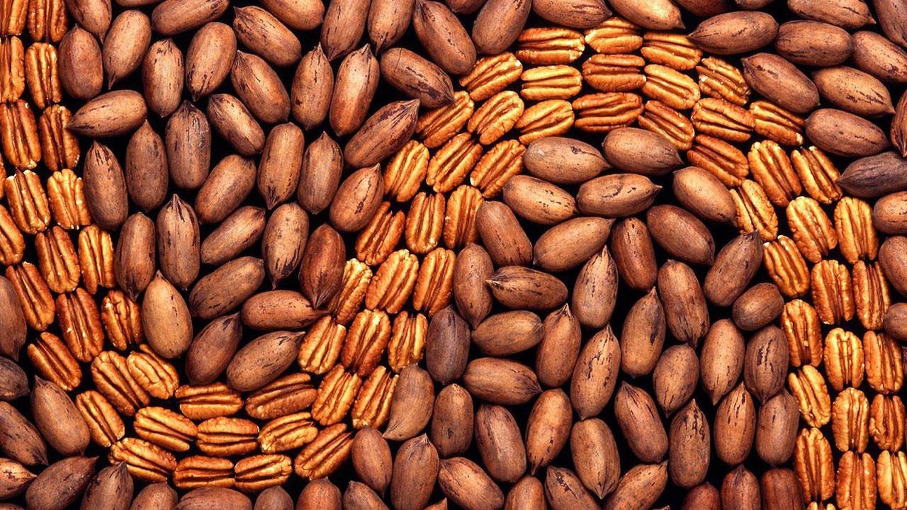 best worst nuts - pecans08985167-159532